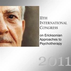Image of IC11 Topical Panel 05 - Hypnosis in Brief Therapy - Douglas Flemons, T