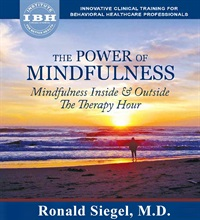 Image ofThe Power of Mindfulness: Mindfulness Inside & Outside the Therapy Hou