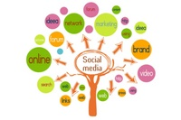 Image ofSocial Media: Risks and Benefits