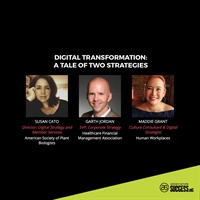 Image of  Digital Transformation: A Tale of Two Strategies