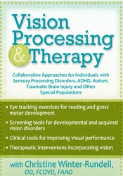 Image of Vision Processing & Therapy: Collaborative Approaches for Individuals