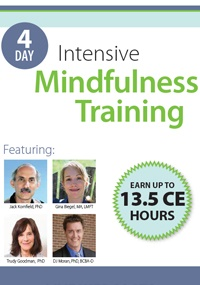 Image of4-Day Intensive Mindfulness Training