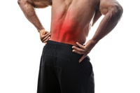 Image of Hip & Low Back Pain