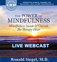 The Power of Mindfulness: Mindfulness Inside & Outside the Therapy Hou